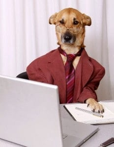Dog dressed in business suit at a laptop