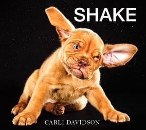 book review SHAKE by Carli Davidson